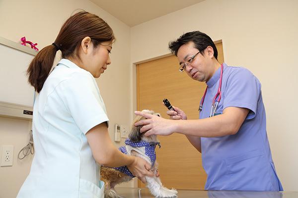 「早期発見・早期治療」が命を守る